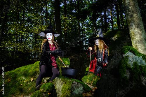 Poster Feeën en elfen Girl in the forest dressed Halloween witch costume