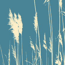 Reeds Silhouette On A Turquoise Background. Vector.