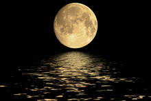 Planet Moon. Elements Of The F...