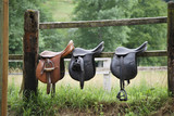 Fototapeta Horses - Three saddles