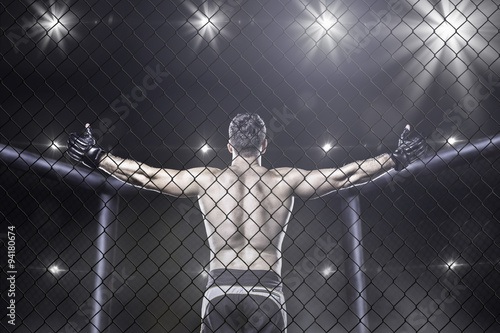 plakat mma fighter in arena celebrating win, behind view
