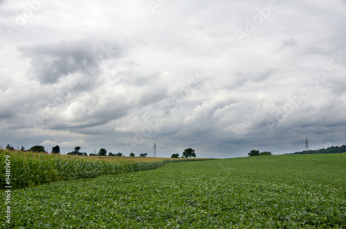 Fotografie, Obraz  Rural Country Farmland