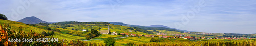 Beautiful colorful vineyards, autumn in Alsace Wallpaper Mural