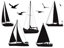 Various Sailing Boats With Birds In Silhouette