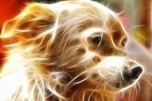 Fractal Dog Illustration