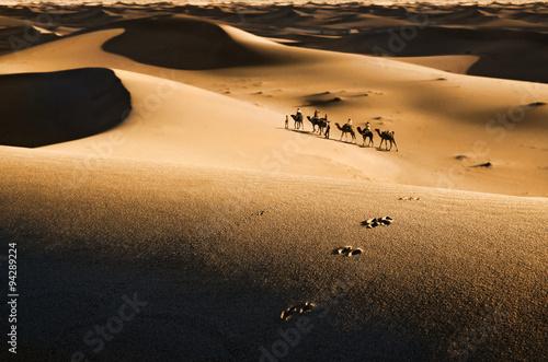 Poster de jardin Desert de sable Caravan in desert