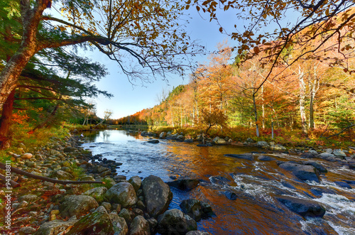Adirondacks Fall Foliage, New York Canvas-taulu