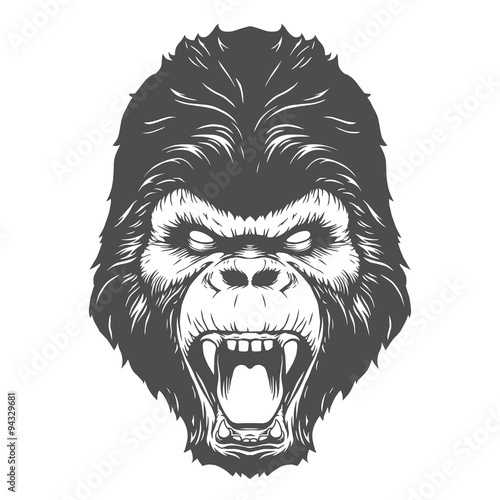 Photo  Gorilla head illustration