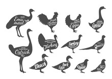 Poultry Silhouettes Collection...