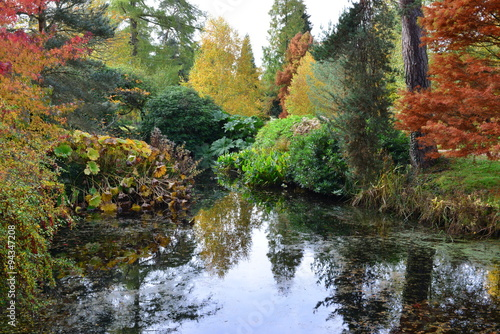 Foto op Canvas Bomen The grounds of an old crumbling castle in the County of kent in Autumn