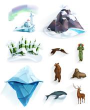Polar Nature, Winter Wonderlan...