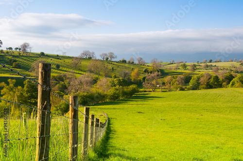 Fotobehang Toscane On the pasture, Smardale Gill, Great Britain
