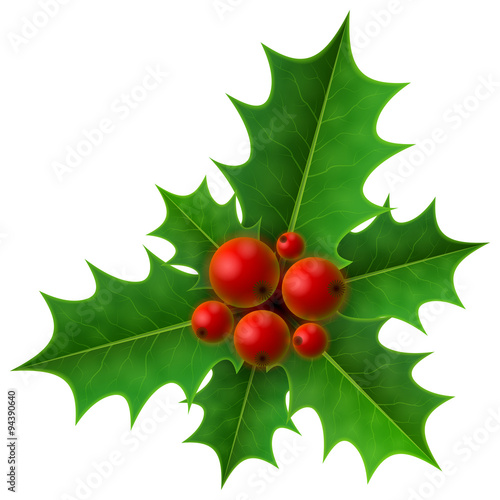 Fotomural  Christmas holly berry isolated on white. Holly fruits with leaf