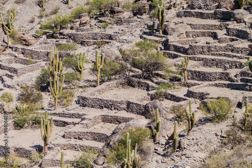 Poster Ruine Ruins of pre-Inca city Quilmes, Argentina