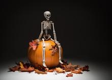 Skeleton With Pumpkin & Leaves