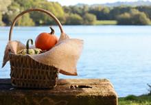 Basket Filled With Small Pumpk...