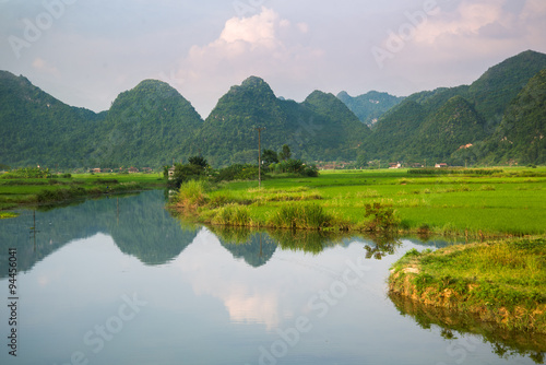 Photo sur Toile Les champs de riz River and rice field in vietnam
