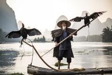 Cormorant Fisherman Showing Birds