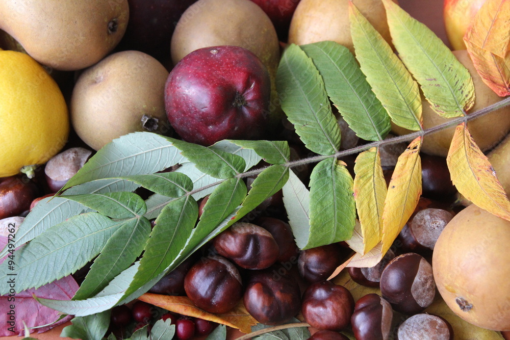 Obraz owoce jesieni  fototapeta, plakat