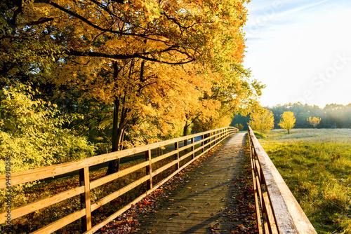 Foto op Plexiglas Bruin Wunderschöne Herbstlandschaft