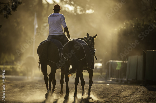 Fototapeta caballo equino deporte obraz