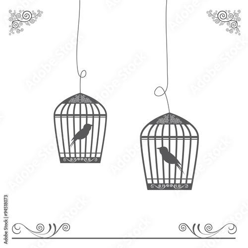 Fotografia  birdcage vintage design