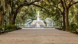Fototapeta Sawanna - Forsyth Fountain Under Oaks