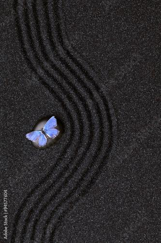 blekitny-zywy-motyl-na-zen-ogrodzie-z-fala