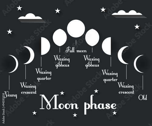 The phases of the moon. Vector illustration. Canvas Print