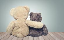 Friendship. Two Teddy Bears.