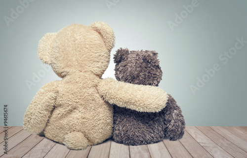 Friendship. Two teddy bears.