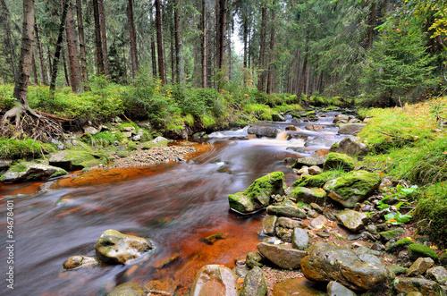 Photo Stands Lavender Die Rolava mit moosbewachsenen Steinen, Erzgebirge