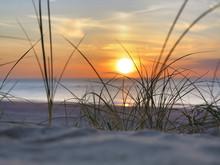 Strand, Strandhafer, Sonnenunt...