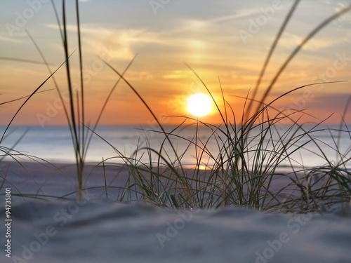 Foto-Kissen - strand, strandhafer, sonnenuntergang am meer (von Wilm Ihlenfeld)