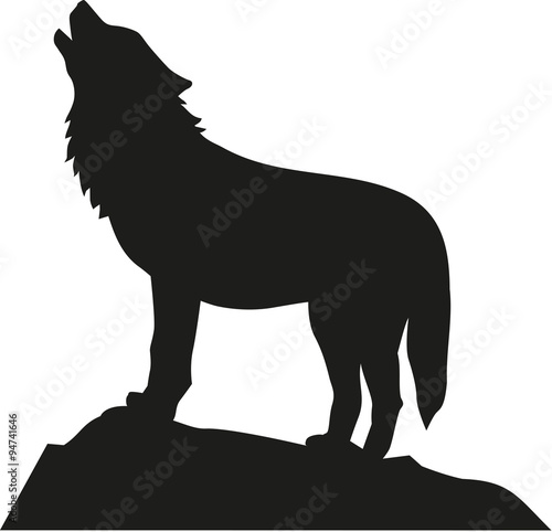 фотография  Wolf standing and howling