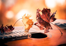 Vintage Guitar With Faded Leafs