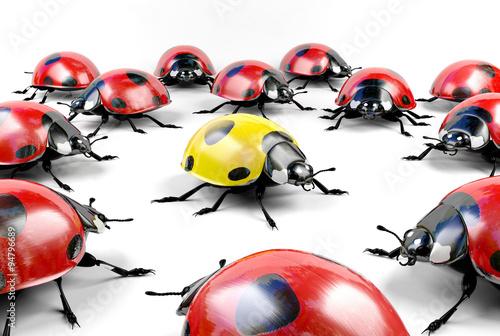 Fotografia Yellow ladybug surrounded by group of red ladybugs, stock image representing una