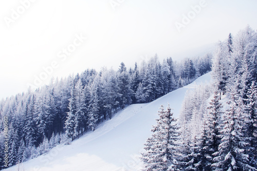 Pinturas sobre lienzo  Ski slope