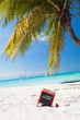 Count down till Christmas holiday on tropical vacation