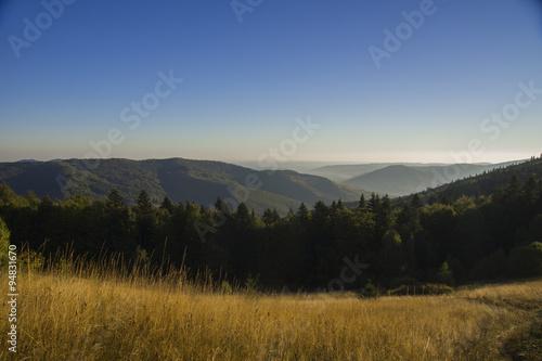 Foto op Aluminium Nachtblauw Autumn View of the Ukrainian Carpathian mountains,