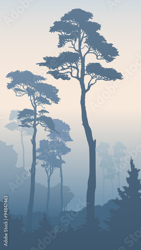 vertical-illustration-of-forest-with-tall-pines