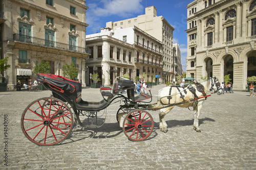 Tuinposter Havana A horse and carriage in the plaza of Old Havana, Cuba