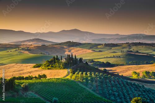Fototapety, obrazy: Scenic Tuscany landscape at sunrise, Val d'Orcia, Italy