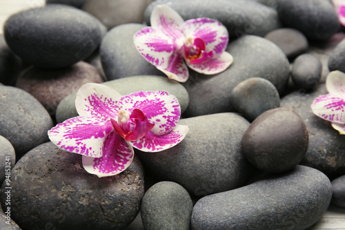 Photo sur Toile Bestsellers Spa stones and orchids closeup