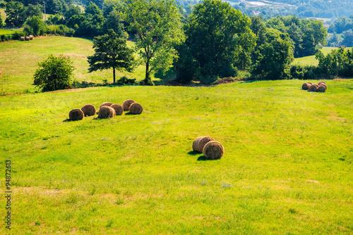 Fotografie, Obraz  Tuscany landscape with haystacks, Italy.