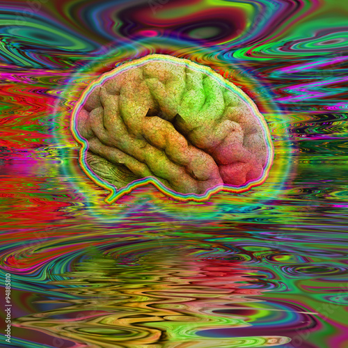 Photo  Psychedelic Brain