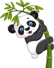 FototapetaCute funny baby panda hanging on a bamboo tree