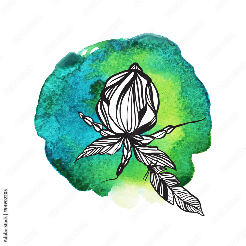 Flowers and feathers in boho style on watercolor background.