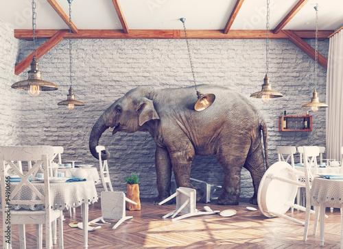 Fotografía The elephant  in a restaurant