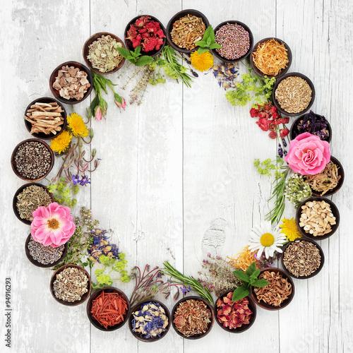 Fotografía  Medicinal Flowers and Herbs